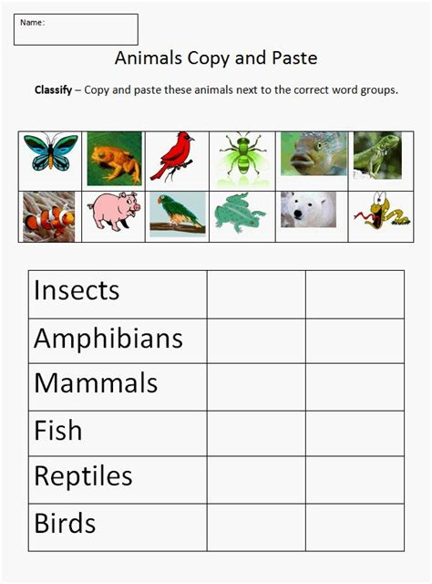 animal classification worksheet science pinterest