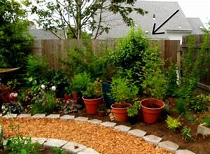 Simple landscaping ideas exquisite design front yard for Simple and easy backyard privacy ideas