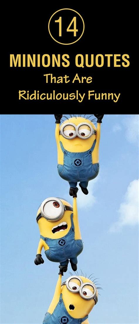 minions quotes   ridiculously funny humor