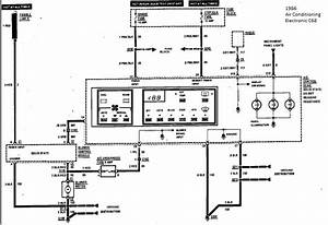 1993 Corvette Bose Radio Wiring Diagram