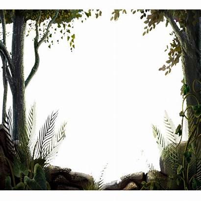 Border Forest Nature Tree Transparent Trees Borders