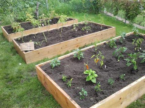building a garden box how to build a garden box casual cottage