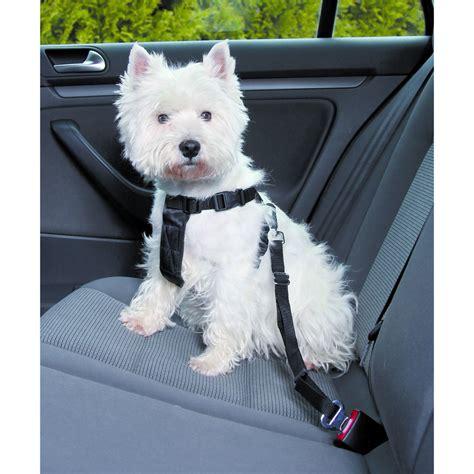hunde sicherheitsgurt sicherheitsgeschirr fuer das auto
