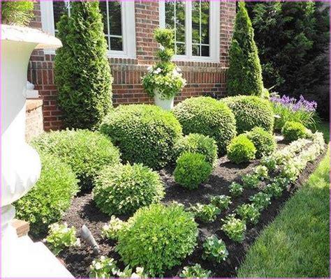 Dwarf Flowering Shrubs  Home Design Ideas Landscaping