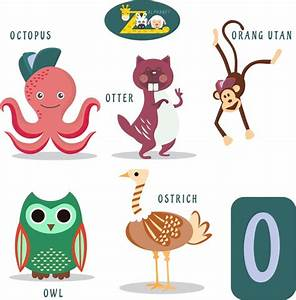 o letter education design with cute animals free vector in With animals with the letter o in their name