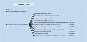 Como Hacer Un Appcc