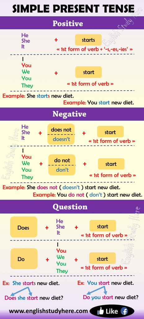 simple present tense  english english study