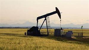 NDP promises carbon curbs that won't hurt oil patch - The ...