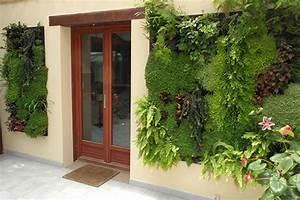 Mur Vegetal Exterieur : mur vegetal exterieur en kit sofag ~ Melissatoandfro.com Idées de Décoration