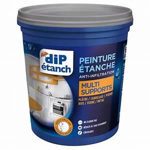 peinture etanche anti infiltrations multi supports dip With peinture etanche pour terrasse