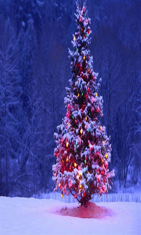 christmas tree  wallpaper  amazoncouk appstore