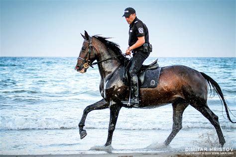 police horses running   water ka photo blog