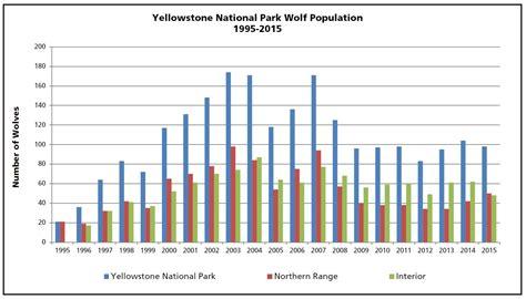 ys   wolf restoration  yellowstone reintroduction  recovery yellowstone national park