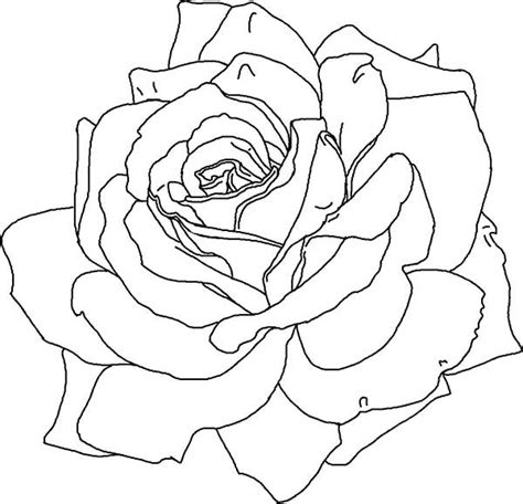 Featured above is a pretty coloring page of some petunia flowers! Awesome Rose Picture Coloring Page - Download & Print ...