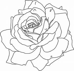 Popular Rose Coloring Page Cool Ideas #8516 - Unknown ...