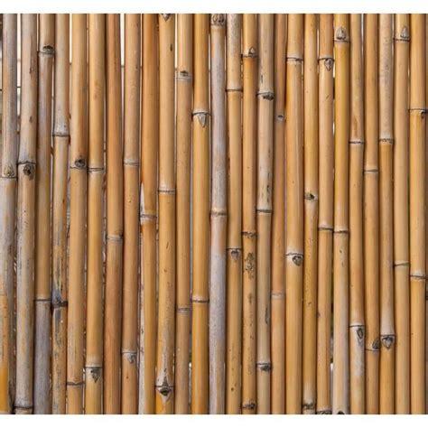 Brise Vue En Bambou Brise Vue En Bambou Naturel 180cm Achat Vente Cl 244 Ture Grillage Brise Vue En Bambou