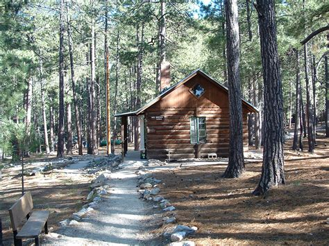 cabin in woods scouting in arizona