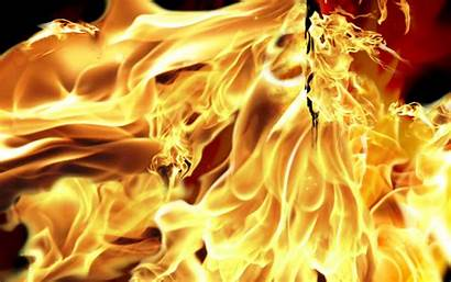 Fire Funny Wallpapers Stunning Desktop Any Feel