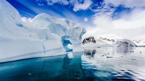 travel  antarctica natural world safaris