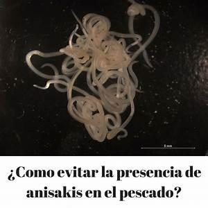 Como prevenir la anisakiosis o parasitación por anisakis