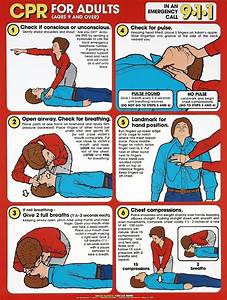 Cpr For Adults Chart