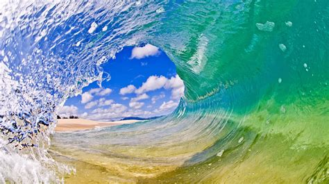 This looks like a conch shell. Clark Little HD Wallpaper - WallpaperSafari