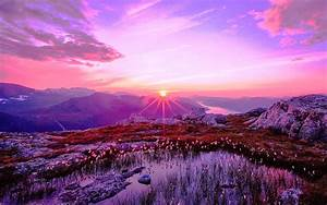 36, Purple, Sunset, Desktop, Wallpaper, On, Wallpapersafari