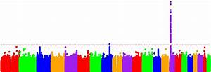 Gene variants modifying Huntington's symptom onset may ...