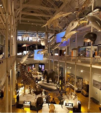 Museum Scotland National Natural Visit Museums