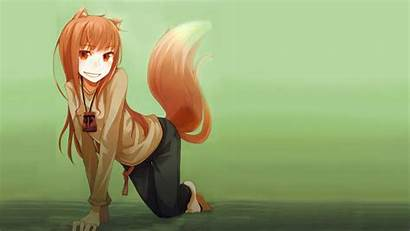 Anime Wolf Fours Eyes Spice Tails Holo