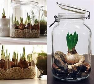 Blumenzwiebeln Im Glas : gestalten sie wundersch ne fr hlingsdeko mit fr hlingsblumen freshouse ~ Markanthonyermac.com Haus und Dekorationen