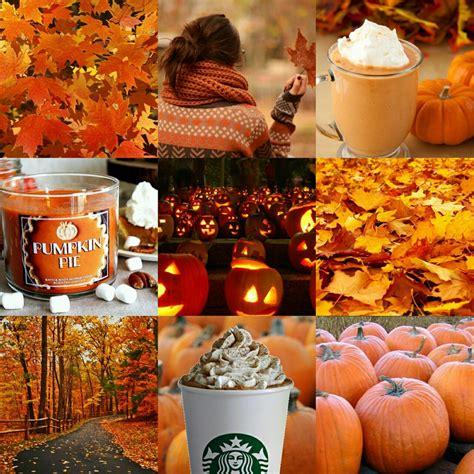 autumn aesthetic | Tumblr | Autumn aesthetic tumblr ...