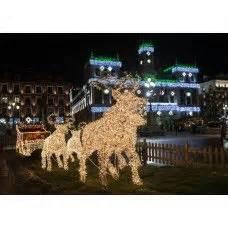 Rentier Mit Schlitten Beleuchtet : 14 best led weihnachtsbeleuchtung images on pinterest christmas lights christmas rope lights ~ Eleganceandgraceweddings.com Haus und Dekorationen