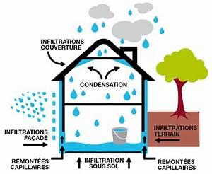 comment reconnaitre les differents types dhumidite dans With probleme d humidite dans maison