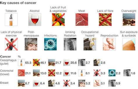 40 of cancers due to lifestyle says review news