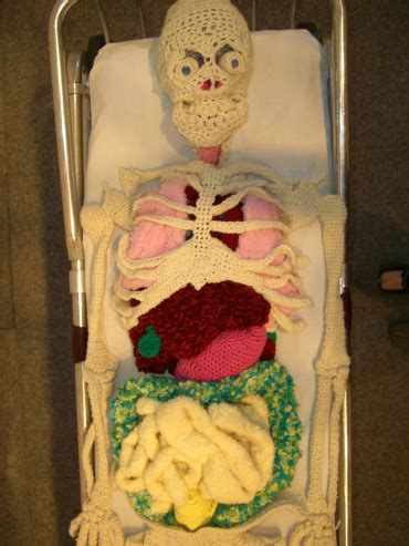 crocheted skeleton sculpture  organs  diy