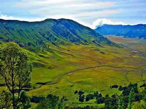 Elevation of Pasrujambe, Lumajang Regency, East Java ...