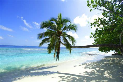 Maldives Travel Guide Igo Travel