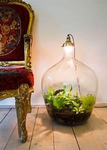 Lampen Für Pflanzen : pflanzen in lampen wohnf hlen wohnf hlen ~ A.2002-acura-tl-radio.info Haus und Dekorationen