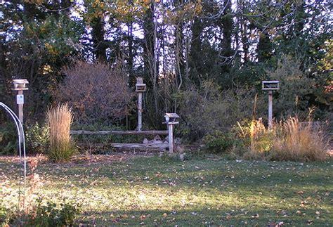 Backyard Bird Habitat by Backyard Habitat