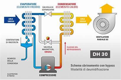 Dh Industriale Trotec Deumidificatore Condensazione