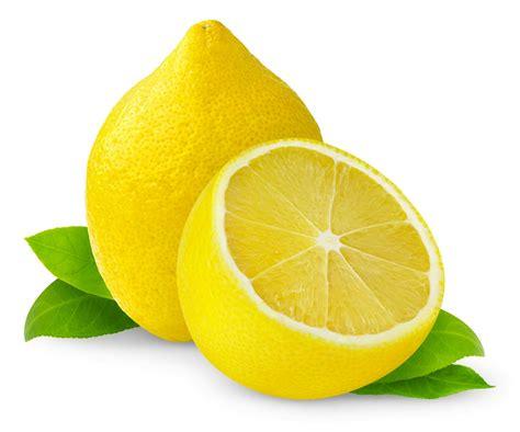 Lemon Wallpaper by Lemon Lemons Photo 35204433 Fanpop