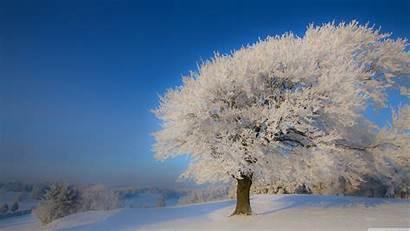 Winter Landscape 4k Desktop Uhd Wallpapers Background