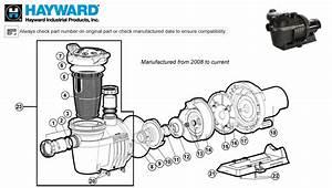 Hayward Northstar Mfg  After 2008 Pump Parts
