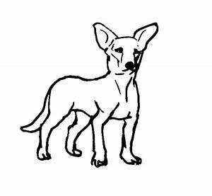 Realistic Dog Coloring Pictures