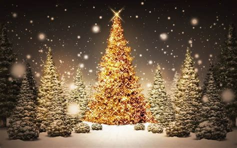 download christmas tree in forest wallpaper hd free