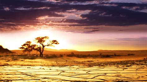 Africa Wallpapers  Best Wallpapers