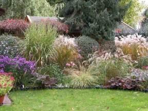 ziergras balkon die besten 17 ideen zu ziergräser auf mehrjährige pflanzen gräser und lila pflanzen