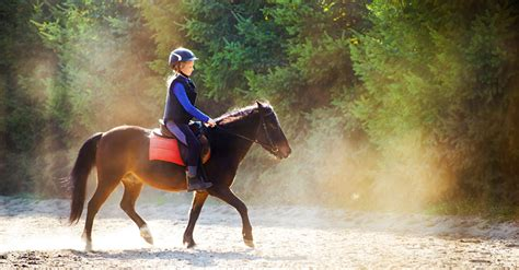 foerdern pferde die entwicklung von kindern weekendat