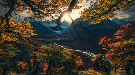 Hd Autumn Background by Wallpaper Forest Tree Mountains Autumn Hd Nature 15808